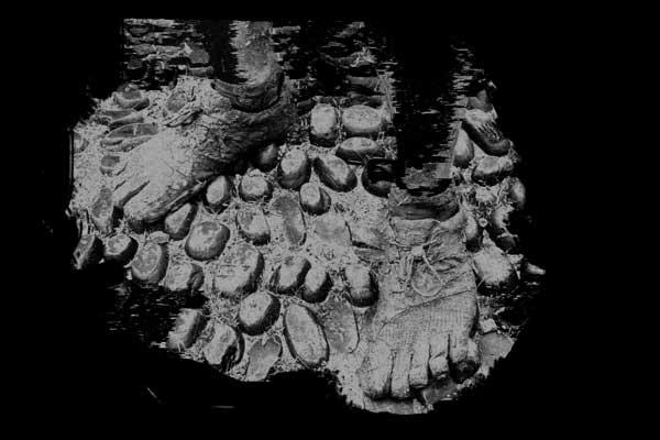 oinak-barefoot